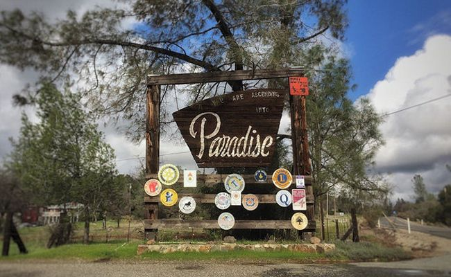 A WildFire Destroyed Paradise