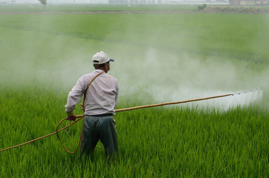 Glyphosate Contaminated Food