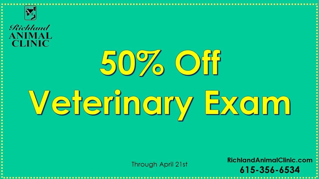 Need a Veterinarian in West Nashville? 50% Off First Exam (Expires April 2018)
