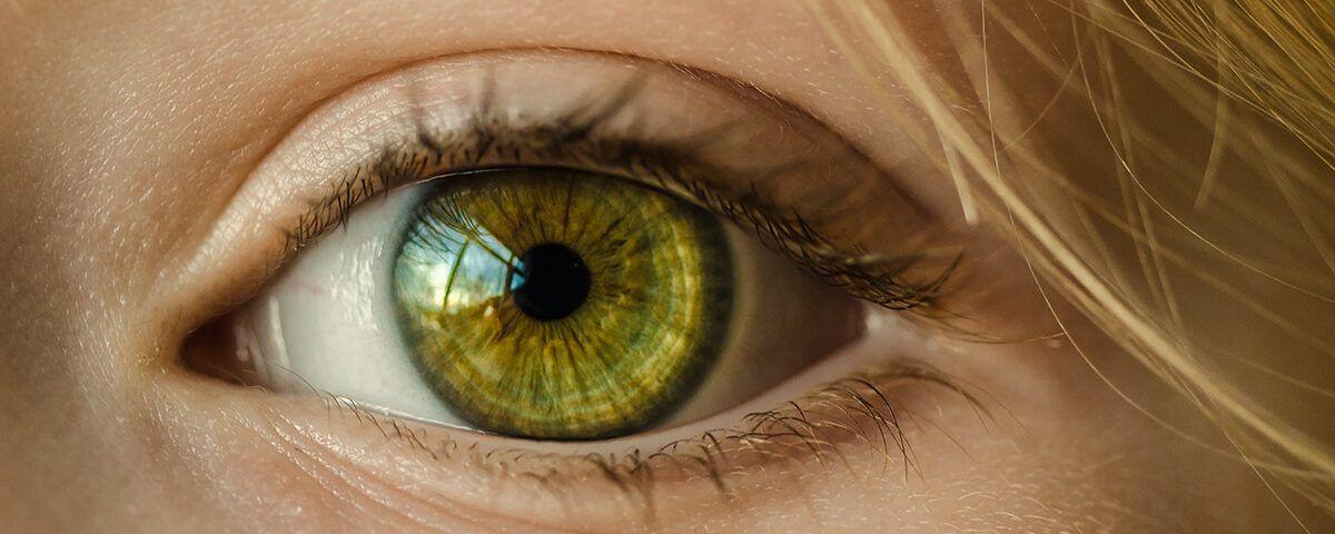 Contact lens exam