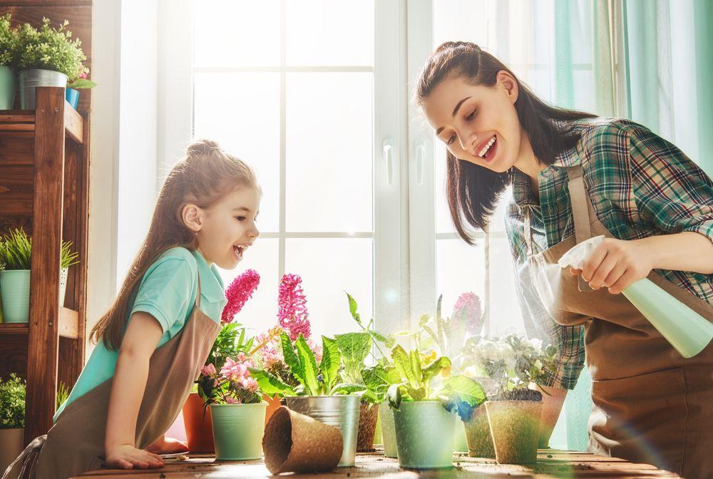 February Garden Tips