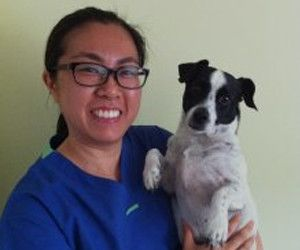 Dr. Yulien Sun