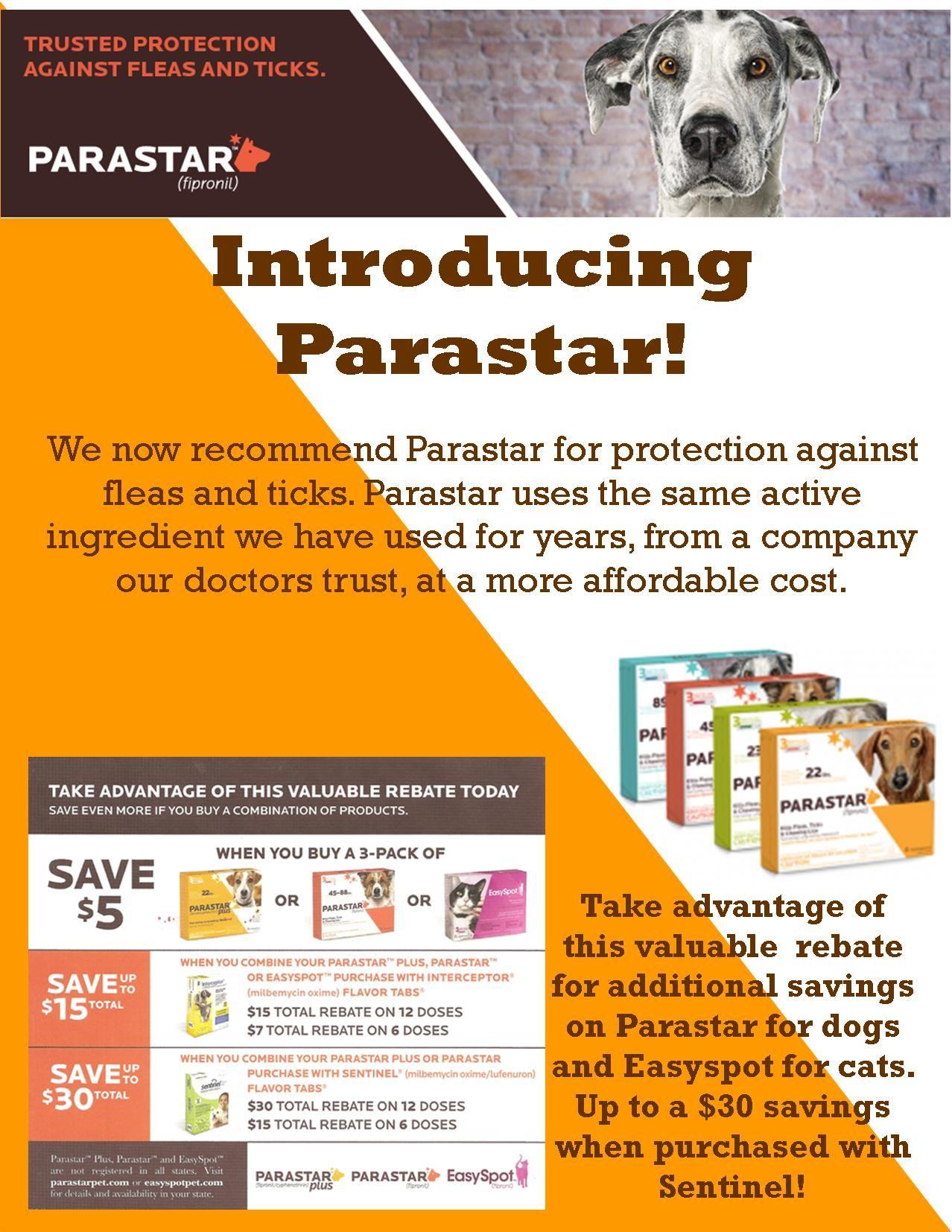 Introducing Parastar!