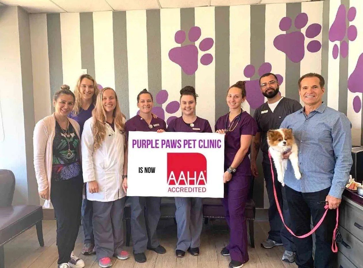 AAHA Accredited Pet Clinic