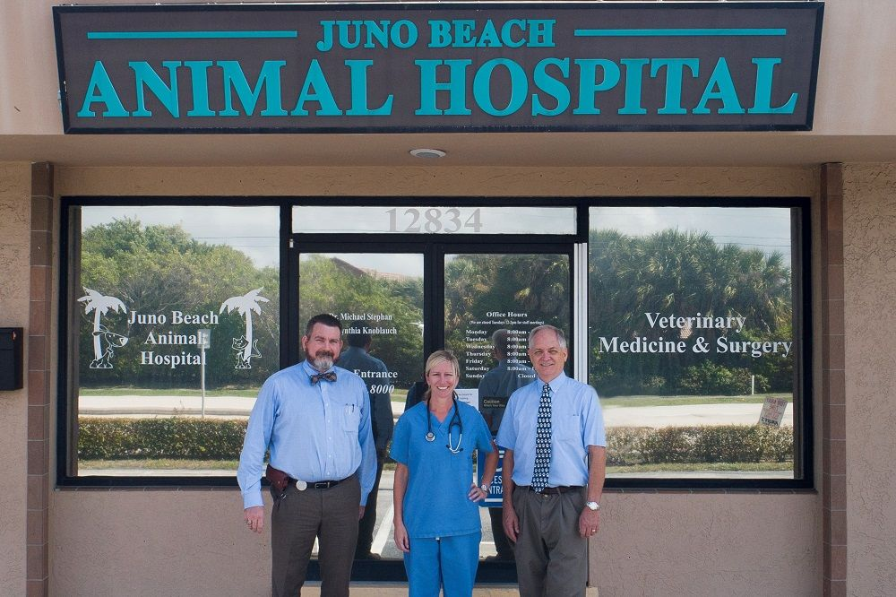 Open House for Town & Country Animal Hospital Clients