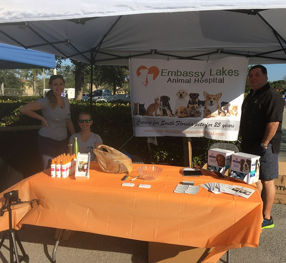 embassy lakes animal hospital team