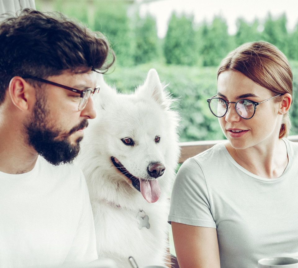 picture of a couple and their pet dog