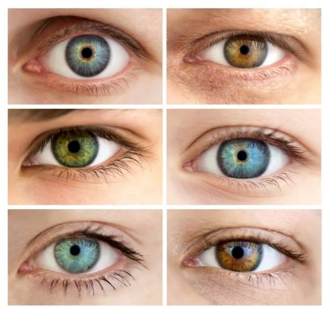 Understanding Eye Color