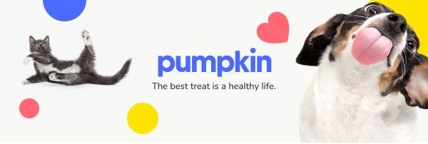 Pumpkin Care Pet Insurance