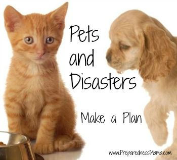June Pet Disaster Preparedness Month