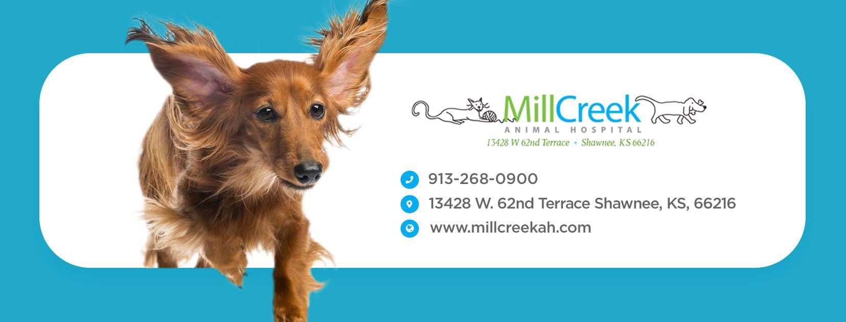 Mill Creek Animal Hospital, Vet in Shawnee KS