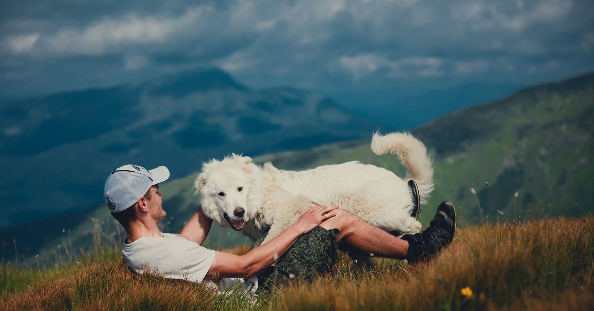 dog and man on a mountain