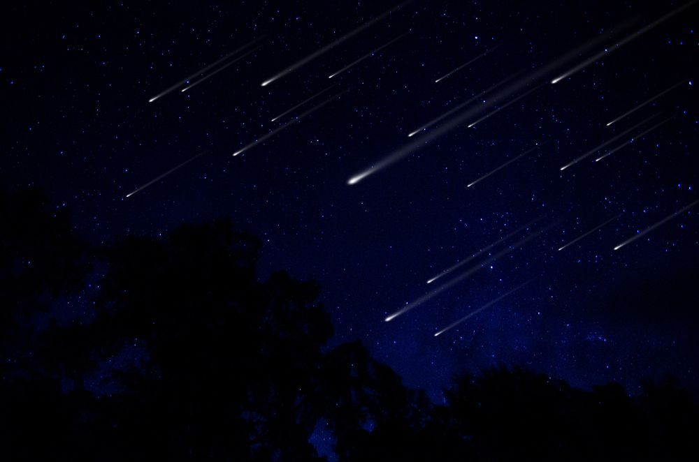 Once-in-a-Lifetime Chance to Watch Perseid Meteor Shower While Paddling Bioluminescent Kayaking in Florida