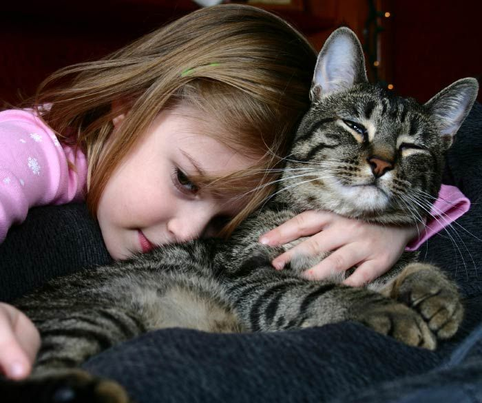kid and her pet cat