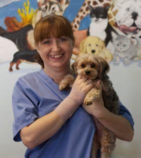 Melissa the veterinary nurse
