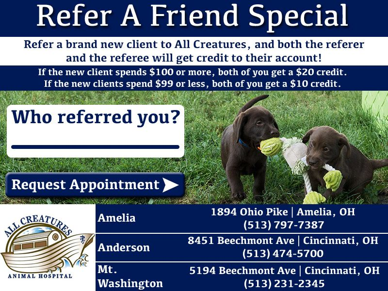 Refer A Friend Special