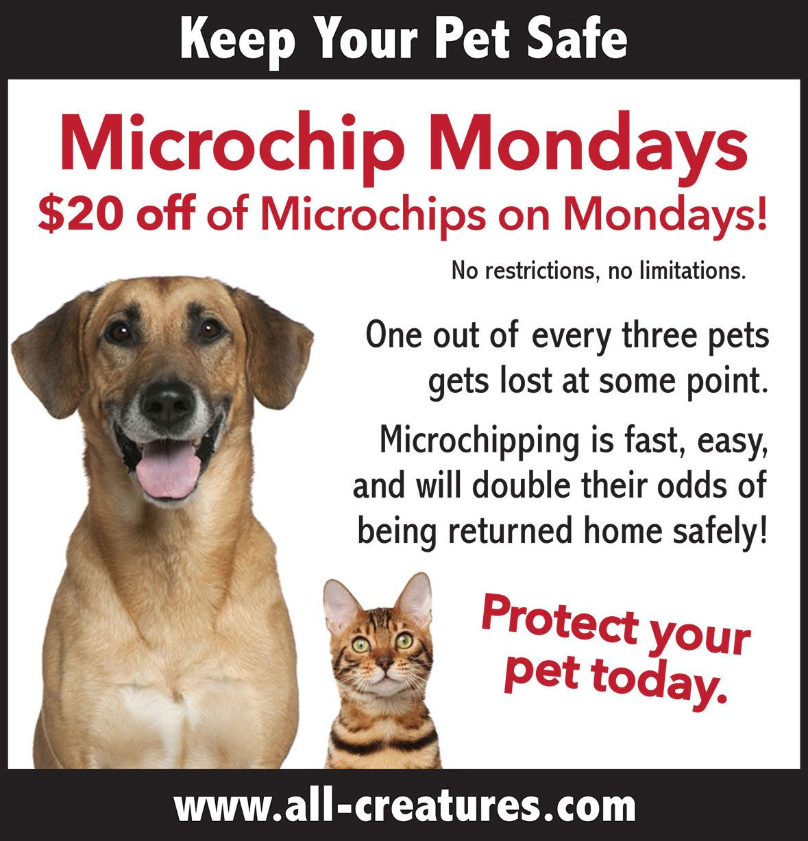 20% Off on Pet Microchips