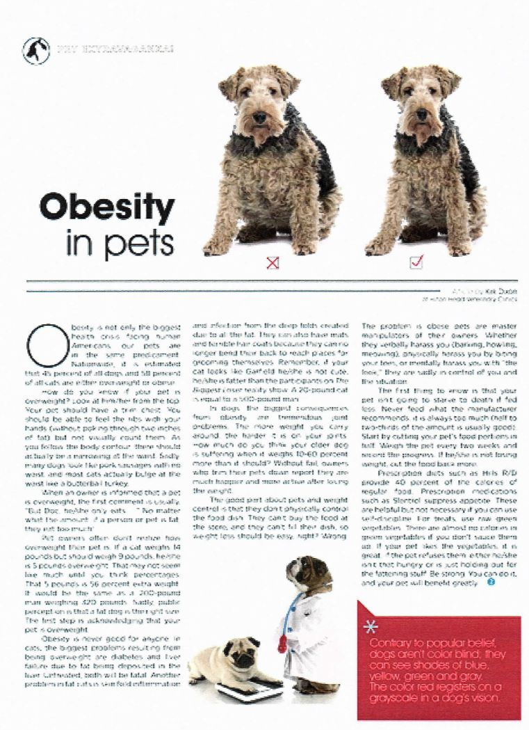 obesity in pets article 1