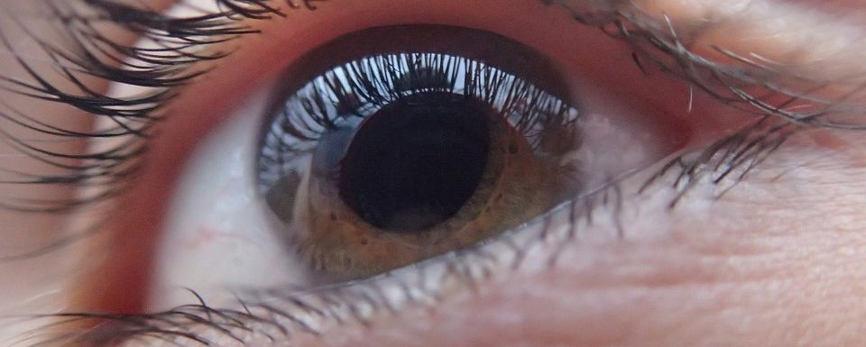 What are the differences between Ophthalmologists, Optometrists and Opticians?