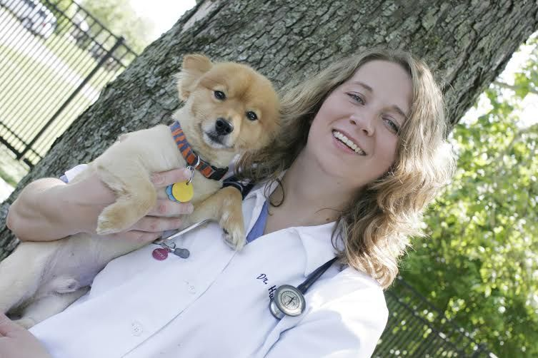 Dr. Hanback