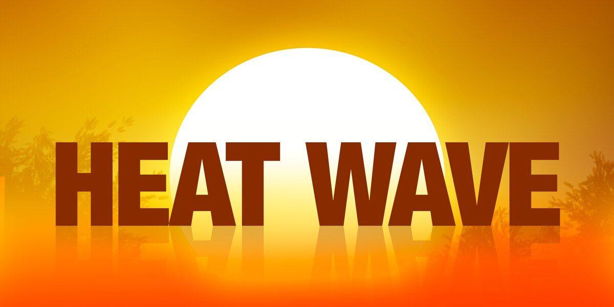 Heat and Obesity