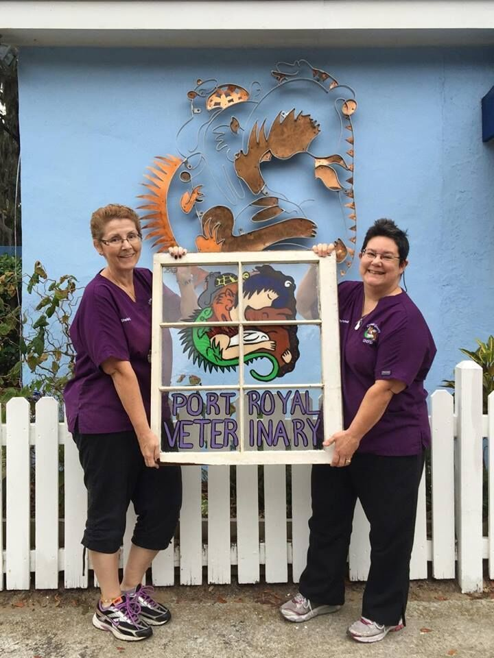 port royal veterinary hospital staff