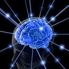 innate intelligence