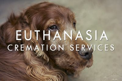 Euthanasia / Cremation Services